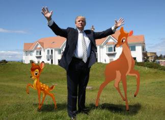 Bambi amb Trump