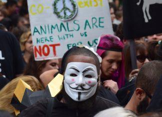 Activistes